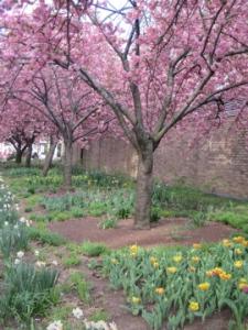 NYU's garden on Bleecker Street